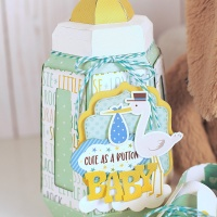 Echo Park Paper: Baby Boy Bottle Box and Baby Shoes